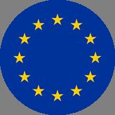 Europe Flag Big