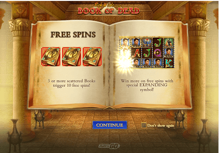 Book of Dead slot features