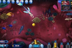 Casino Game Fish Catch
