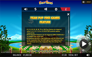 Foxin Twins slot free spins