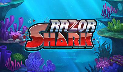 Razor Shark logo big