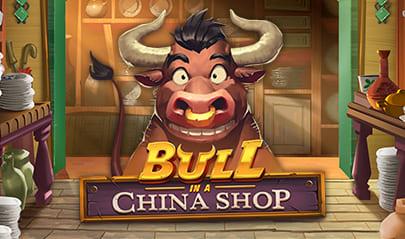 Bull in a China Shop logo big