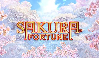 Sakura Fortune logo big